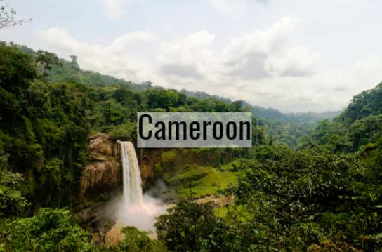 Cameroon – Landscapes & Coffee Plantations