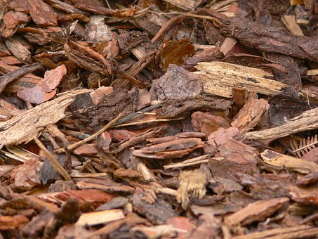 Five Common Mulch Mistakes That You Need To Stop Immediately